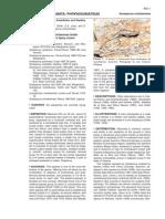 Flores Villela et al (2008)-Sceloporus ochoterenae.pdf