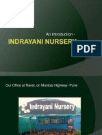 Indrayani Nursery - Introduction