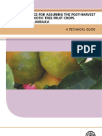 Exotic Fruit Book Web