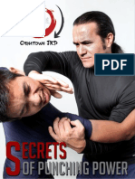 Secrets of Punching Power - Book