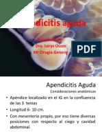 apendicitisagudacharlaencirugasala999-110105195821-phpapp02