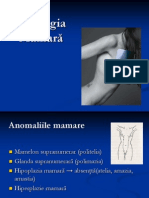 patologia mamară
