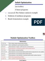 matlab optimization
