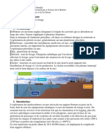 Cours offshore 1.pdf
