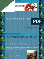 Entomologia Forense - Telma m Pszybylski