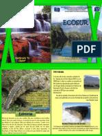 revista ECOSUR.pdf