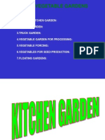 eswara reddy-Kitchen Garden Ppt.