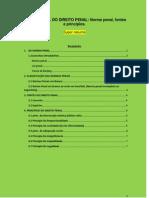 TEORIA GERAL DO DIREITO PENAL - Norma penal, fontes e princípios