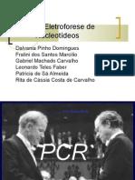 Reação em cadeia da polimerase (PCR)