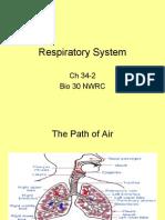 34-2 Respiratory System