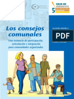 5. Los Consejos Comunales