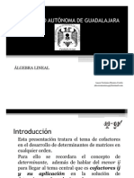 20028337-4-COFACTORES