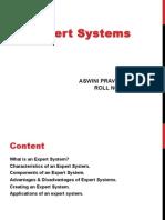 Aswini Expert Systems