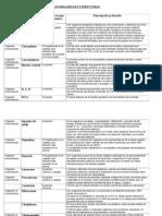 Los Organelos y Estructuras