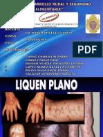 LIQUEN PLANO.pdf