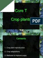 Core T - Crop Plants