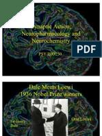 Neurochemistry PPT in PDF