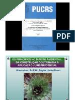 Principios de Direito Ambiental