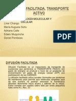 DIFUSIÓN FACILITADA, TRANSPORTE ACTIVO