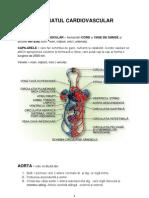 Curs Cardiologie