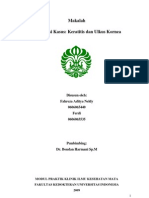 39509670-Preskas-Ulkus-Kornea