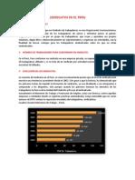 Sindicatos en El Peru