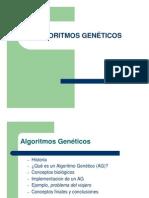 Algoritmos Geneticos - Transparencias