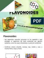 PresentaciónFlavonoides