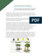 Influencia de Las Fases Lunares en La Agricultura