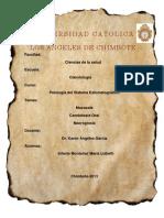 Trabajo Final - Patologia II Unidad