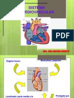 Valoraciòn de la Funciòn Cardiovascular