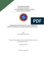 01-TESIS.IP009.P65
