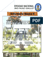PAE DE OLGA OSORES.doc