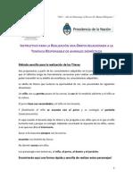 INSTRUCTIVO PARA LA REALIZACIÓN UNA OBRITA RELACIONADA A LA.pdf