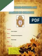 Patología entrega de producto.pdf