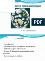 Clase 4 Mb Procariontes Bacterias 2013 i
