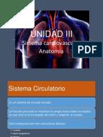 Sistema cardiovascular anatomía UNIDAD III Clase N° 1