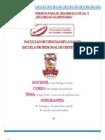 Investigacion Formativa 03