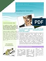 Oportunidad de Mercado en PDF