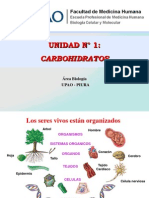 10. Tema Carbohidratos