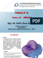 21.  Nucleo