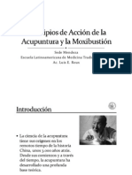 Acupunt Moxibustion