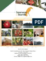 Curriculum Conservacion y Desarrollo 2013 Julio