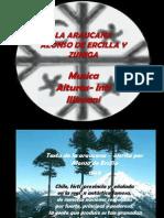 laaraucana-110417163558-phpapp01