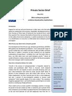 UNDP private sector brief I - micro-enterprise growth