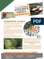 poster biomimétisme