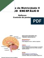12_controle_motricidade_tronco