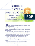 02.07 - Os Esquilos Danilos e a Ponte Nova