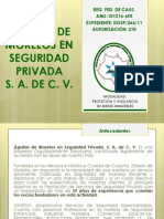 PRESENTACION AMSPSA 2013