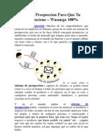 Sistema De Prospeccion Para Que Tu Negocio Funcione – Wasanga 100%